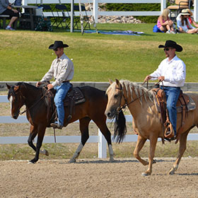 Two trainers riding horses