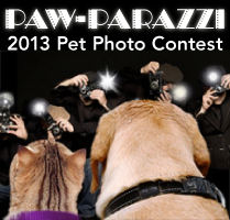 Paw-parazzi Pet Photo Contest