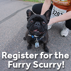 Register for the Furry Scury