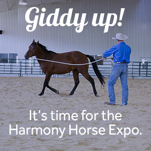 It's time for the Harmony Horse Expo