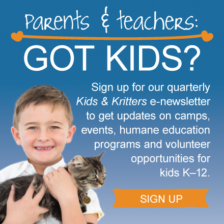 Got kids? You don't want to miss Kids & Kritters!