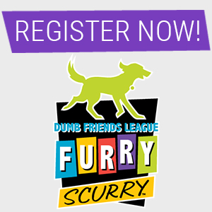 Register for the Furry Scurry