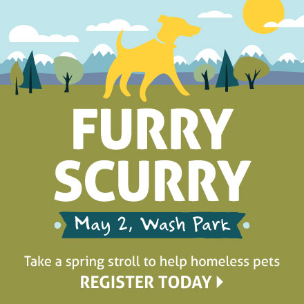 Join the fun at the Furry Scurry!