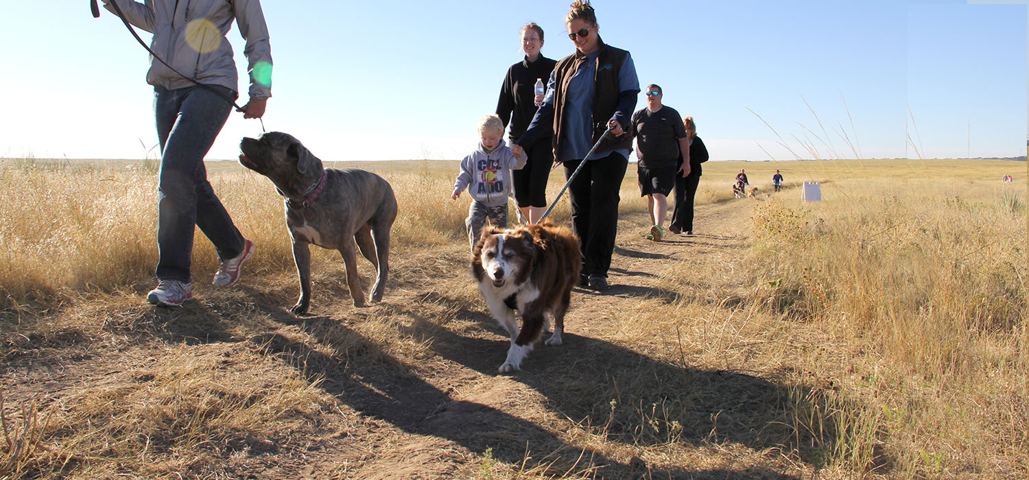 Take a leisurely hike with your dog to help homeless pets.